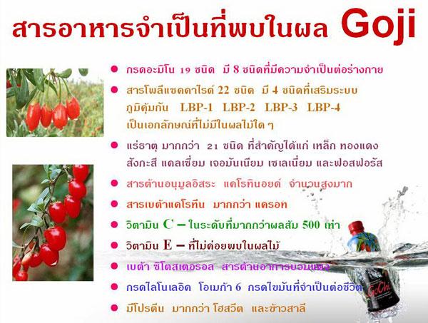 http://www.siamshop.com/uppic_pt/bc/e167ce5defccbfa6af49cf38fb1ad1bc.jpg